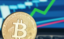 البيتكوين تستقر فوق 8000 دولار رغم الضغوط السلبية في سوق التشفير